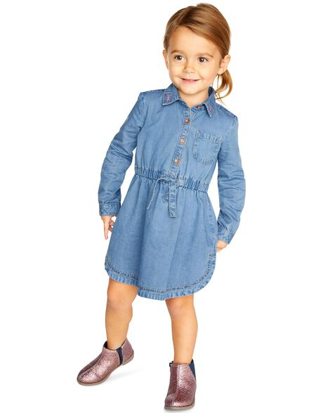 Embroidered Jean Dress