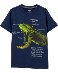 06984757ce1a Boys' Shirts & Polo Tops (Sizes 4-14)   Carter's   Free Shipping